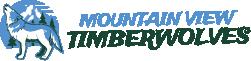 Mountain View Academy Logo